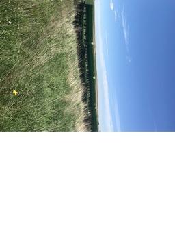 John Deere 9300 40' Grain Drill